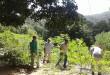 Familia despojada por las Farc recupera predio en Valledupar