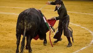 A tiros sacrifican a toro en actividad taurina, en Casanares